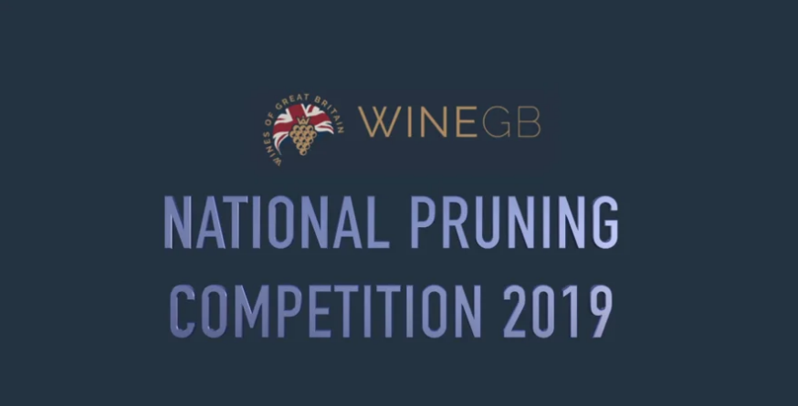 WineGB National Pruning Competition Video